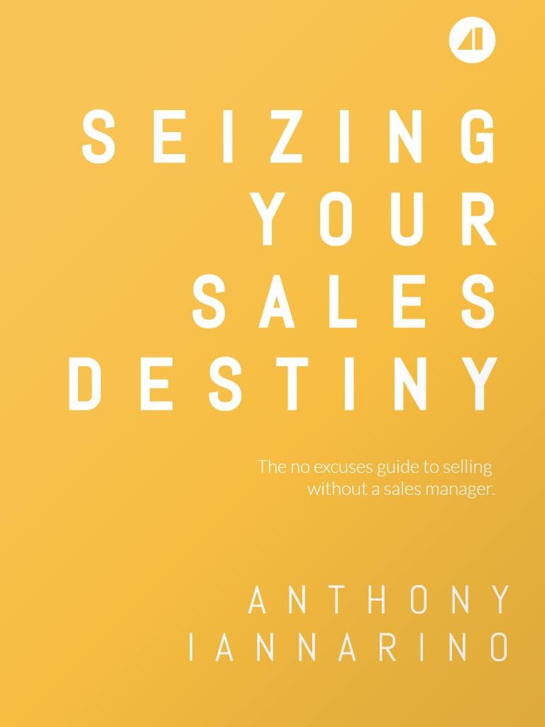 Seizing-Your-Sales-Destiny-ebook-cover.jpg