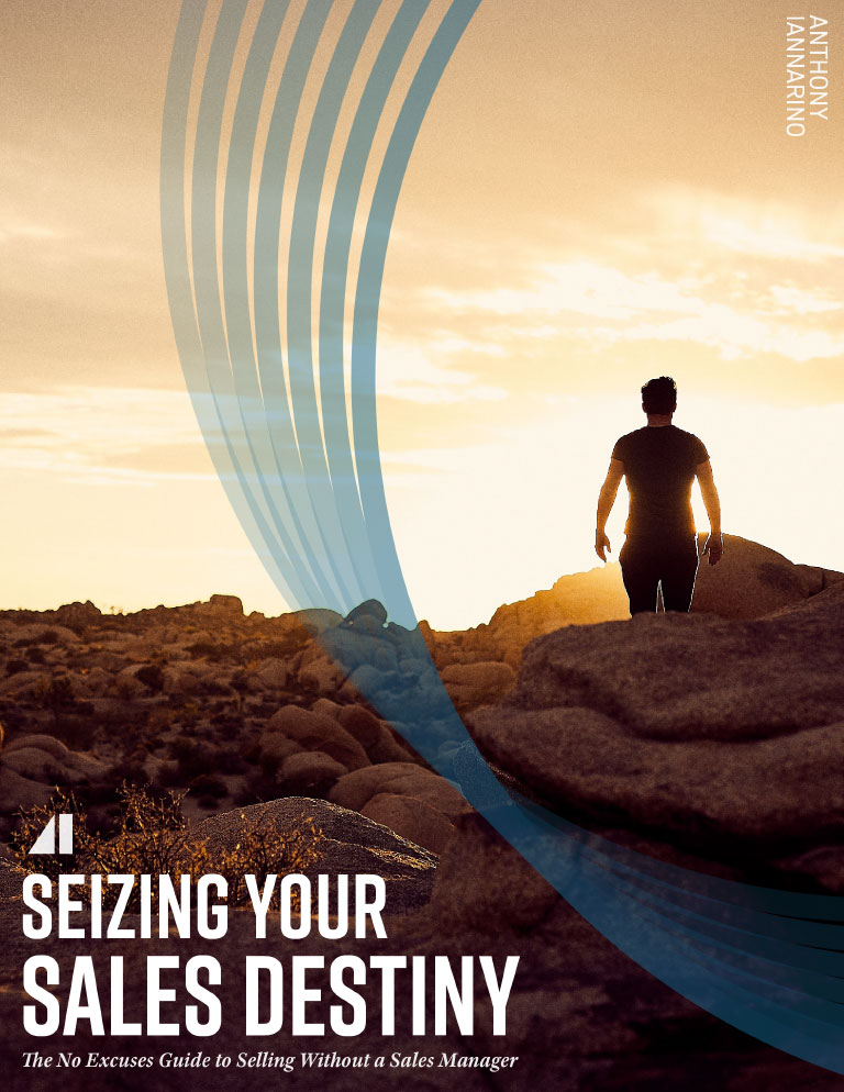 seizing-your-sales-destiny-ebook-v3-1-cover